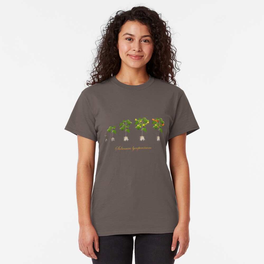 Solanum lycopersicum development  Classic T-Shirt