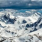 The Mountain Ridge From Trail Ridge Road by Gregory J Summers
