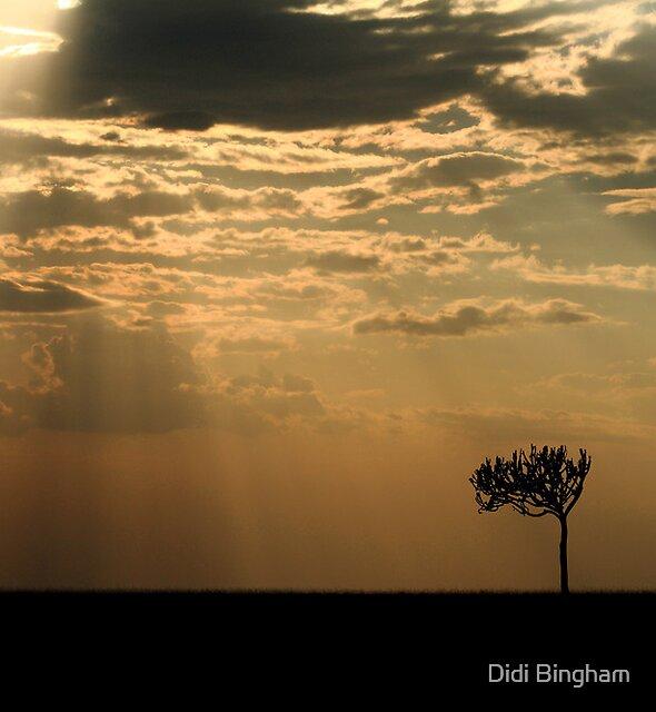 Sunset Over Masai Mara, Kenya II by Didi Bingham