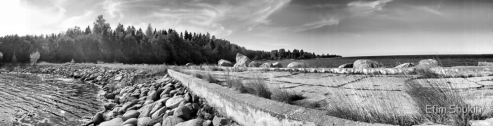 Hara bay panorama. by Efim Shukin