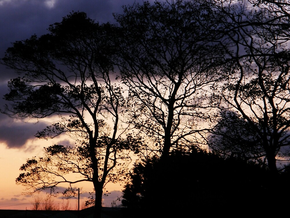 Halloween Sky - Magilligan County Derry Ireland by mikequigley