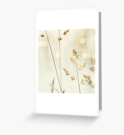 Grass and Bokeh Greeting Card