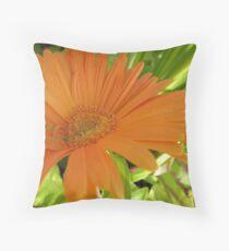 Daisy-Mae Throw Pillow