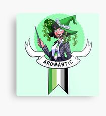 I was sorted into the Aromantic House Metal Print