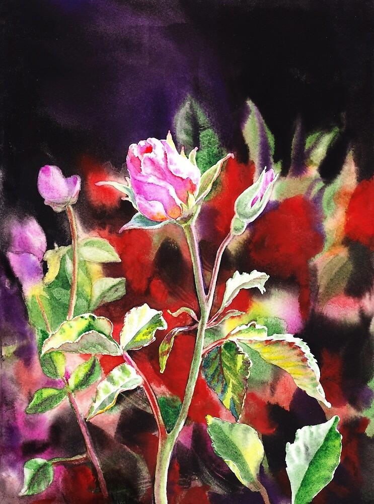Pink Rose Bloom by Irina Sztukowski