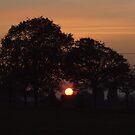 Sunset Calendar 02 by Peter Barrett