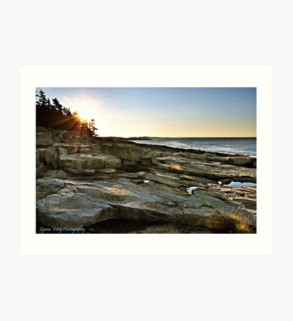 Early Morn at Grindstone Neck Art Print