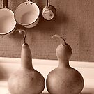 dry gourds at the garden sink by tego53
