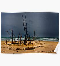 Beach scene Poster