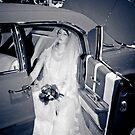 Wedding Day by Joe McTamney