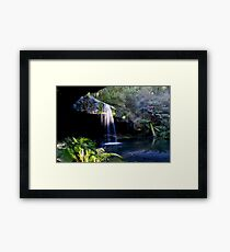 Lower Kalimna Falls  Framed Print
