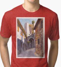 Assisi Ruin Tri-blend T-Shirt