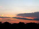 Farewell Kiss of the Sun by MarjorieB