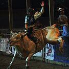 Rodeo State Finals Bullriding by Carl M. Moore