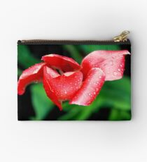 After the Storm Zipper Pouch