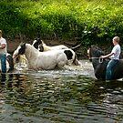 The Horse Fair by Brian Tarr