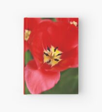 Red Tulip Blossom Hardcover Journal