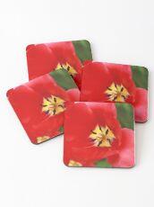 Red Tulip Blossom Coasters