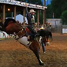 Rodeo State Finals Bronc Riding by Carl M. Moore