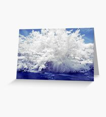 second step in ir Greeting Card