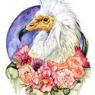 Egyptian Vulture by OddityGarden