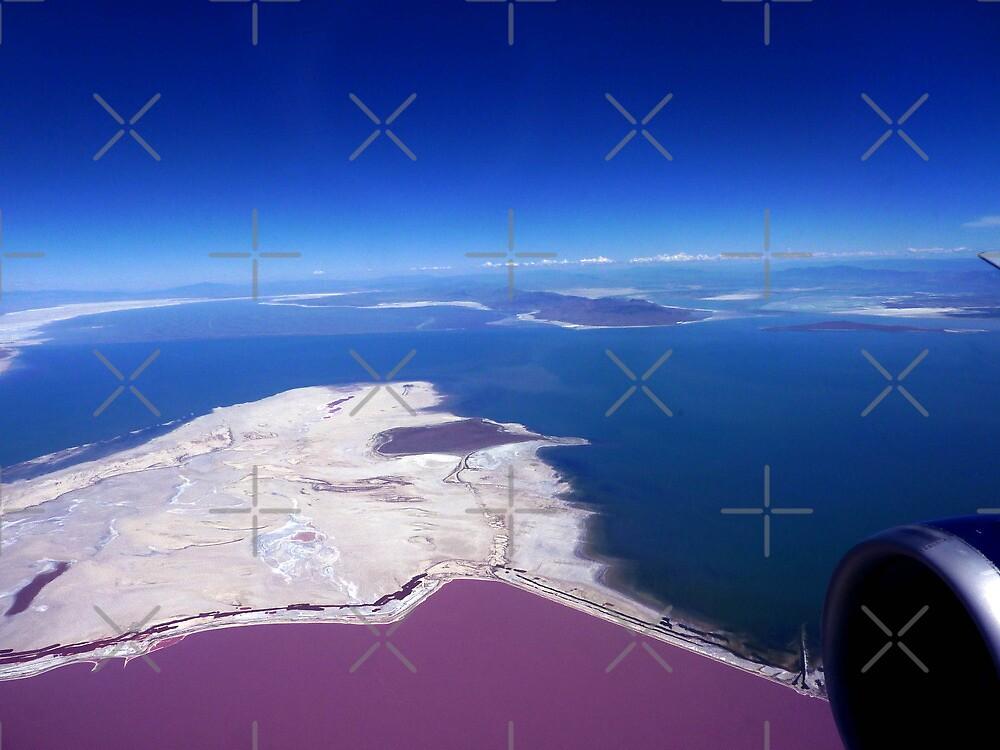 Flying over the Salt Flats of Utah by Shiva77