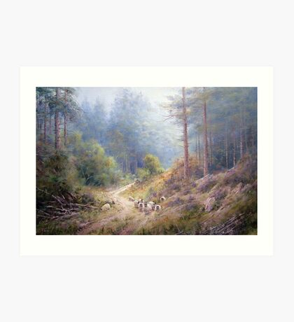 West Wood, Northumberland Art Print