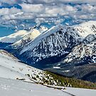 Forest Valley To Longs Peak by Gregory J Summers