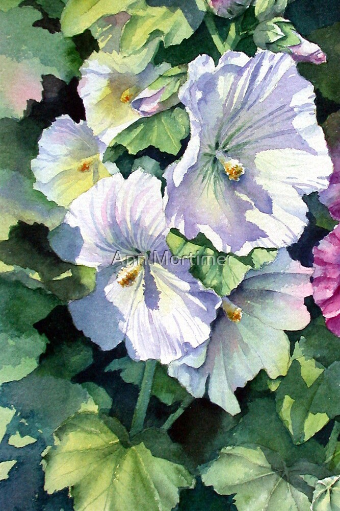 White Hollyhock by Ann Mortimer