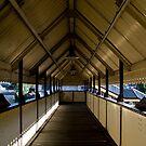 Platform 2 This way by Michael Hadfield