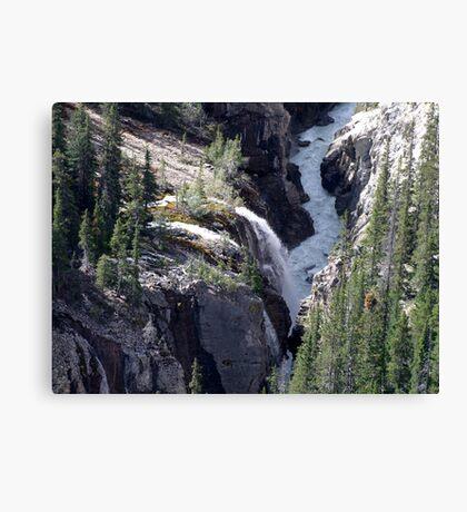 Sunwapta River Canvas Print