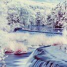An Infrared Evening at Warleigh Weir  by Jens Roesner