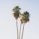 Palme, Sommer, Blau, Neutral, Strandkunst, Tropisch, Moderne Kunst, Wandkunst, Druck, Minimalistisch, Modern von juliaemelian