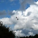 Tiger Moths in the Air by HELUA