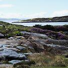 Schroffe Landschaft - Insel von Harris von Kathryn Jones