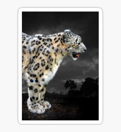 snow leopard Sticker