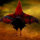 """""""The Sun is UP & I am in a FLAP !..."""" by Rosehaven"""