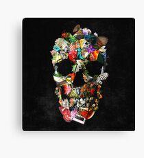 Fragile Skull 2 Canvas Print