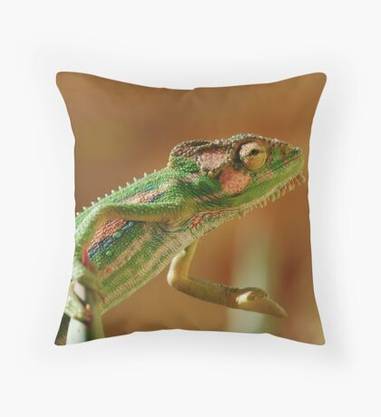 Shake on it....... Throw Pillow