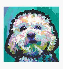 Poodle Maltipoo Dog Bright colorful pop dog art Photographic Print