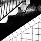 Stairs by TJ Trubert