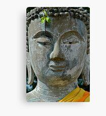 Nature Buddha Canvas Print