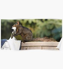 Stuffed Rodent Poster