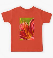 Lily's Heart Kids Clothes