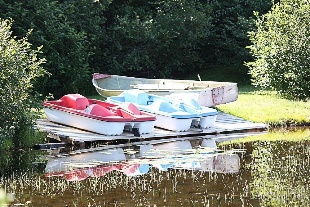 Cabot Cove Lake Paddle Boats & Dorry by Leslie van de Ligt