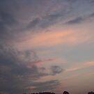 Sky Dreams by Michael T