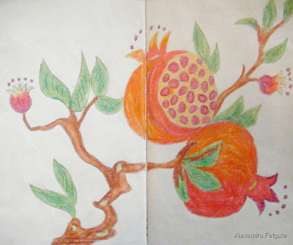 Pomegranate - Sketch Book Project by Alexandra Felgate