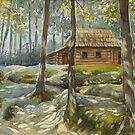 Bukovina by Vira Kalinovska