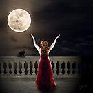 Moon Worship by Sally McLean