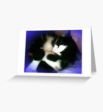 Nestling Greeting Card